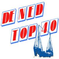 Reinier Witbols Feugen - De Ned top 40